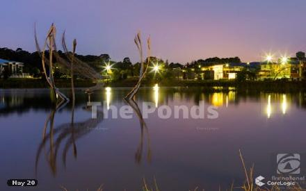 Property photo of 48 Petal Parkway The Ponds NSW 2769